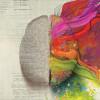 Creierul Impartit