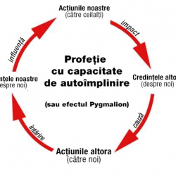 self fulfilling prophecy diagram - romanian
